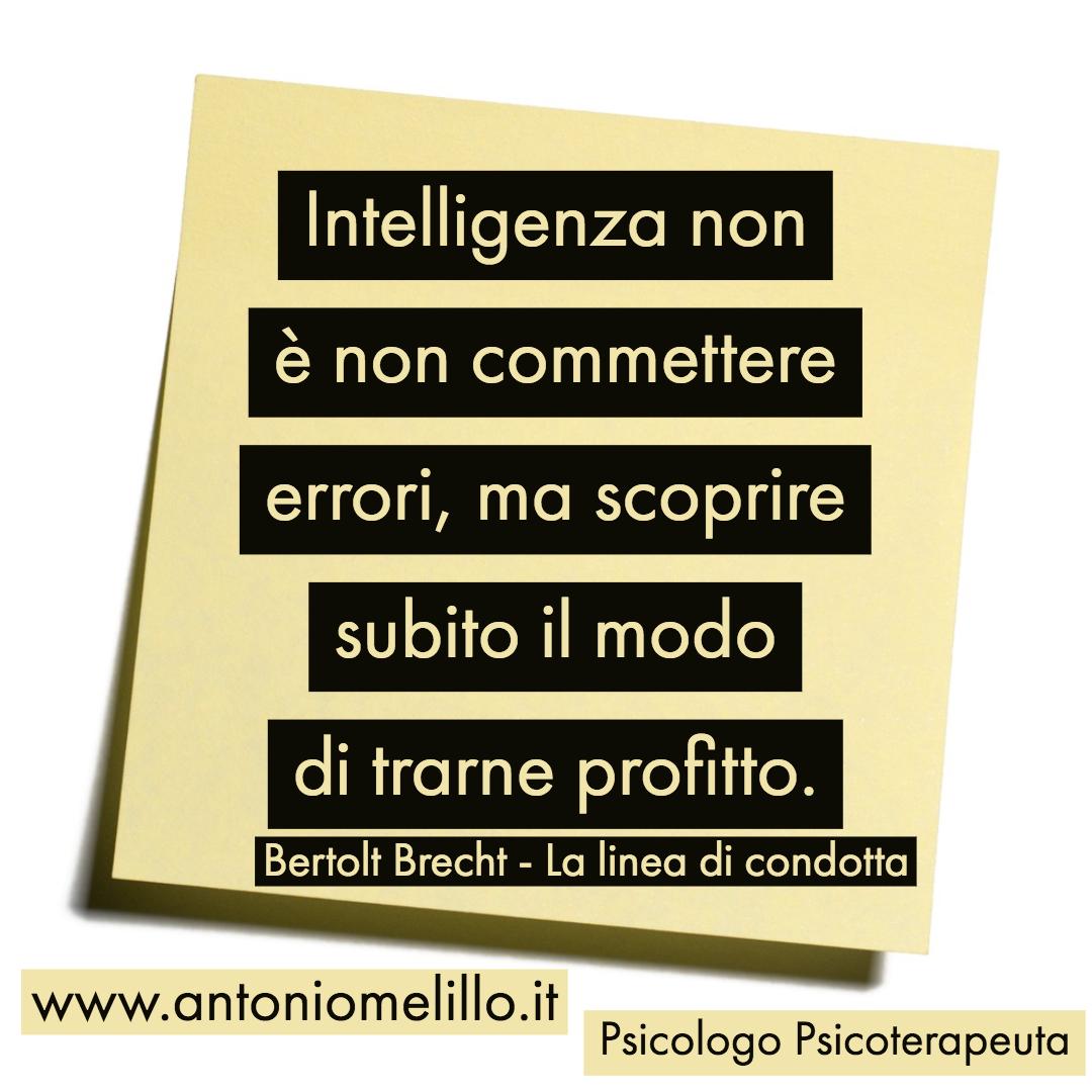 Intelligenza non è non commettere errori, ma scoprire subito il modo di trarne profitto.
